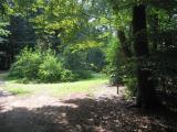 De Wandelbos: een prachtig stuk natuur ten westen van Donkerbroek